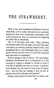 Cover of: A complete manual for the cultivation of the strawberry