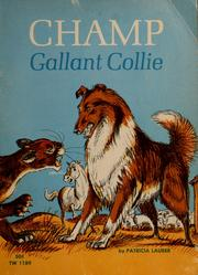 Cover of: Champ, gallant collie