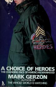 Cover of: A choice of heroes: the changing faces of American manhood