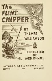 Cover of: The flint chipper
