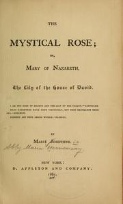 Cover of: The mystical rose