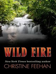 Cover of: Wild fire