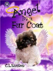 Cover of: Angel in a Fur Coat