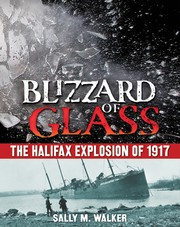 Cover of: Blizzard of glass