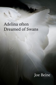 Cover of: Adelina Often Dreamed Of Swans