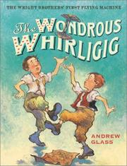 Cover of: The wondrous whirligig