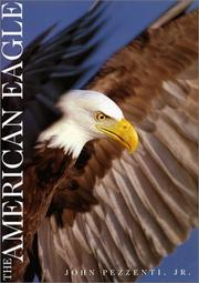 Cover of: The American eagle