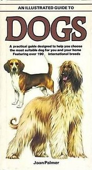 Cover of: An illustrated guide to dogs