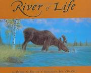 Cover of: River of life