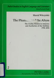 Cover of: The phantom and the abyss