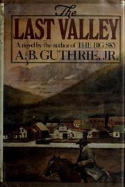 Cover of: The last valley