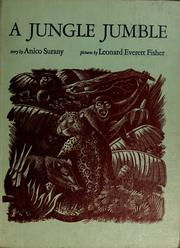 Cover of: A jungle jumble