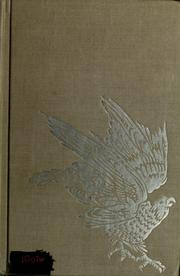 Cover of: The white falcon