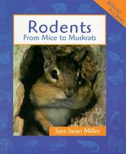 Cover of: Rodents: From Mice to Muskrats (Animals in Order)