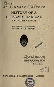 Cover of: History of a literary radical: and other essays