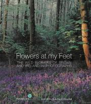 Cover of: Flowers at My Feet