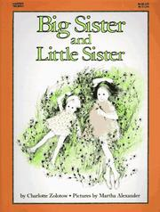 Cover of: Big sister and little sister