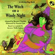 Cover of: Witch on a Windy Night (Lift-the-Flap)
