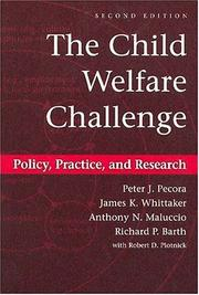 Cover of: The Child Welfare Challenge