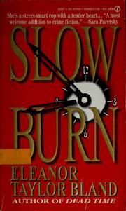 Cover of: Slow Burn (Marti MacAlister Mystery)