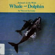 Cover of: Whale and Dolphin