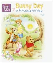 Cover of: Sunny Day in the Hundred-Acre Wood (Super Tab Books)