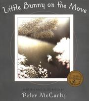 Cover of: Little Bunny on the Move (An Owlet Book)