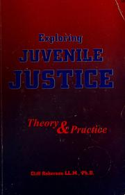 Cover of: Exploring juvenile justice