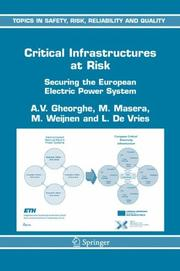 Cover of: Critical Infrastructures at Risk