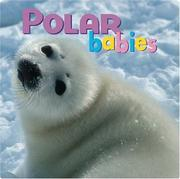 Cover of: Polar Babies