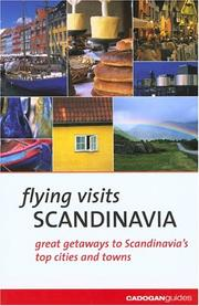 Cover of: Flying Visits