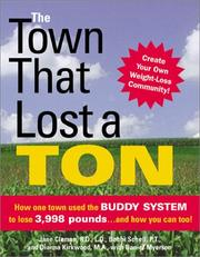 Cover of: The Town That Lost a Ton