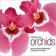Cover of: Introducing Orchids