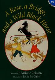 Cover of: A Rose, a Bridge, and a Wild Black Horse (Hop Book # 29)