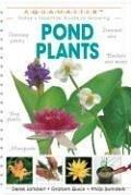 Cover of: Pond Plants (Aquamaster)