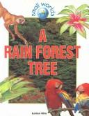 Cover of: Rain Forest Tree (Small Worlds)