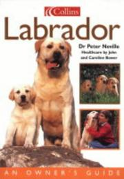 Cover of: Labrador | Peter Neville
