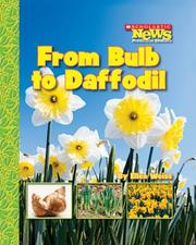 Cover of: From Bulb to Daffodil | Ellen Weiss