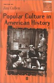 Cover of: Popular Culture in American History by Jim Cullen