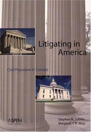 Cover of: Litigating in America by Stephen Subrin