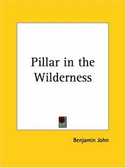 Cover of: Pillar in the Wilderness | Benjamin John