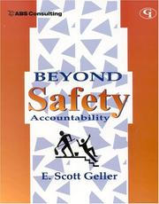 Cover of: Beyond Safety Accountability | E. Scott Geller