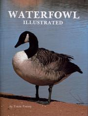 Cover of: Waterfowl illustrated by Tricia Veasey