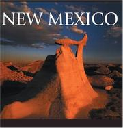Cover of: New Mexico by Tanya Lloyd Kyi
