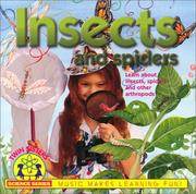 Cover of: Insects and Spiders | Kim Mitzo Thompson