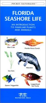 Cover of: Florida Seashore Life by James Kavanagh