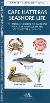Cover of: Cape Hatteras Seashore Life | James Kavanagh