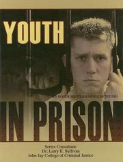 Cover of: Youth in Prison (Incarceration Issues: Punishment, Reform, and Rehabilitation) | Roger Smith