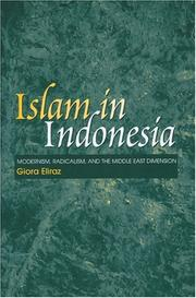 Cover of: Islam In Indonesia | Giora Eliraz