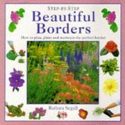 Cover of: BEAUTIFUL BORDERS | BARBARA SEGALL